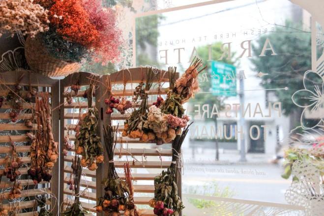 Inside Arriate flower cafe in gangnam